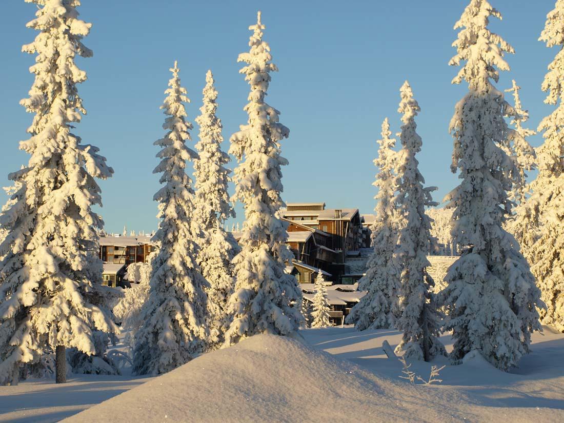 Norefjell Ski & Spa, F...